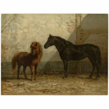 Pl. 34 Engelsche en Fransche Ponny's - Eerelman (1898)