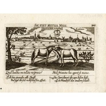 Franeker in Frieslandt - Meisner (1678)
