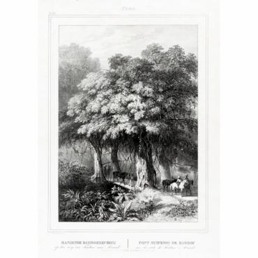 Pl.XL Celebes - Hangende Bamboezen Brug op den weg van Tondano (..) - Van de Velde (1844)