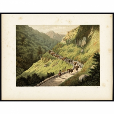 Pl.II p.186 Journey through the Southern Mountains on Java - Perelaer (1888)