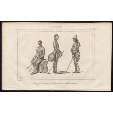 Pl.91 Indigenes atteints de la lepre et de l'Elephantiasis - Rienzi (1836)
