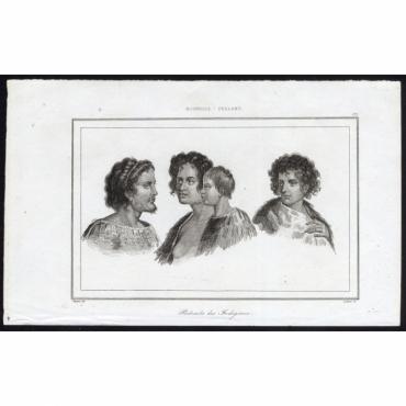 Portraits des Indigenes - 175, Nouvelle Zeeland- Rienzi (1836)