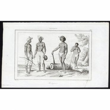 Indigenes - 221, Papouasie - Rienzi (1836)