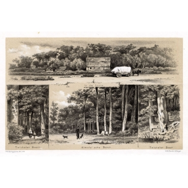 In de Lutte-Twickler Bosch-Almelo'sche Bosch - Craandijk (1888)
