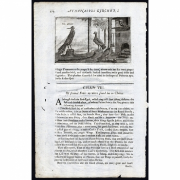 Fum Hoam - Leki Ki - Nieuhof (1673)