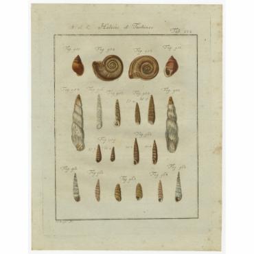 Tab. 112. Helices et Turbines - Chemnitz (1786)