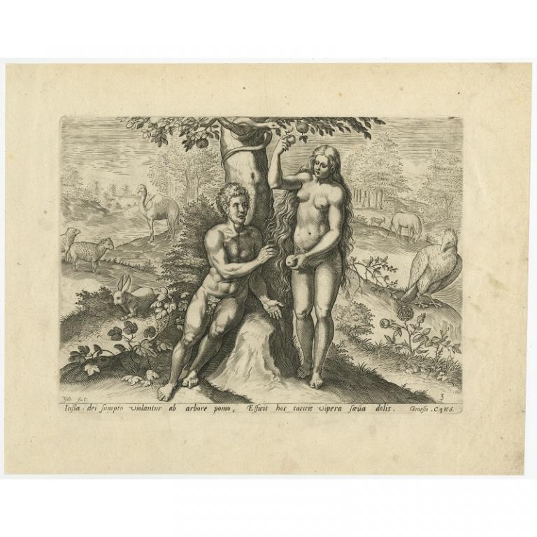 Lussa dei sumpto violantur ab arbore pomo (..) - Anonymous (1674)
