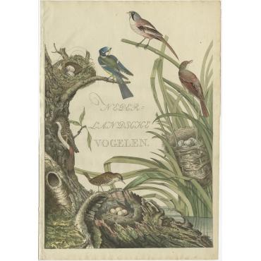 Nederlandsche Vogelen - Sepp & Nozeman (1770)