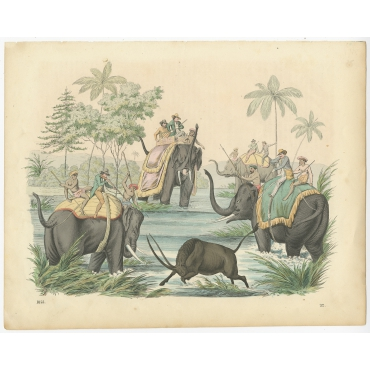 Untitled Print Bison Hunt - Hoffmann (1855)