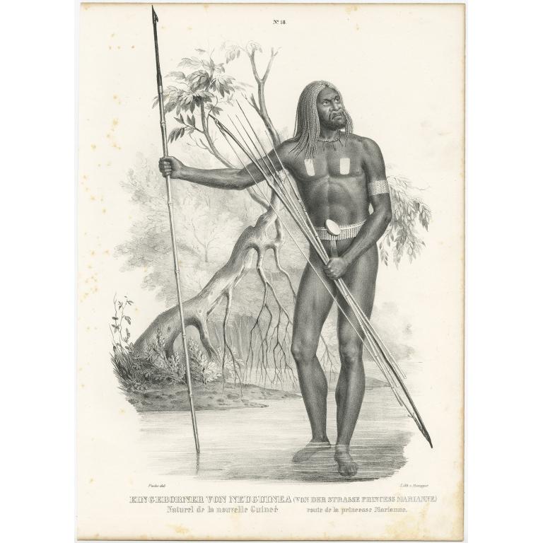 Eingeborner von Neuguinea - Honegger (1836)