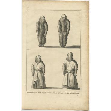 Mandragoras door Konst opgemaakt (..) - Anonymous (c.1725)