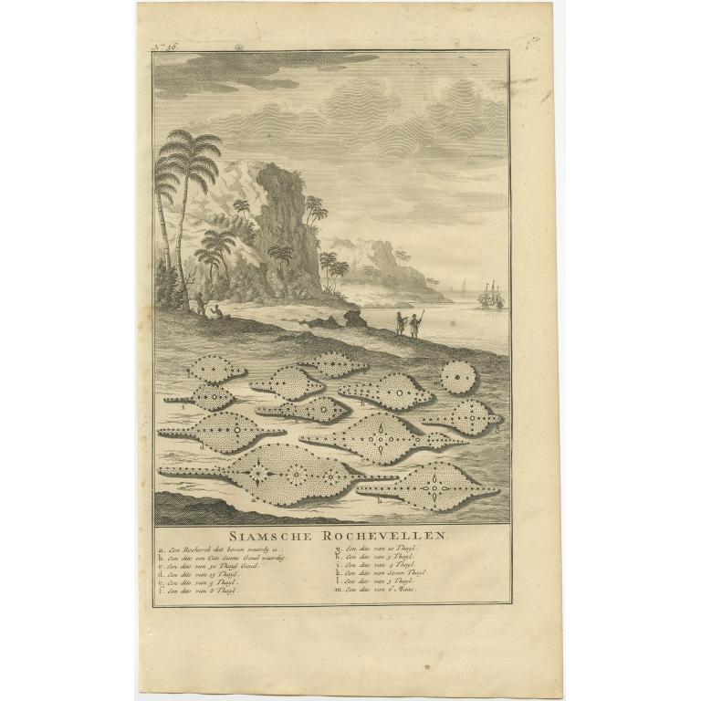 Siamsche Rochevellen - Valentijn (1726)