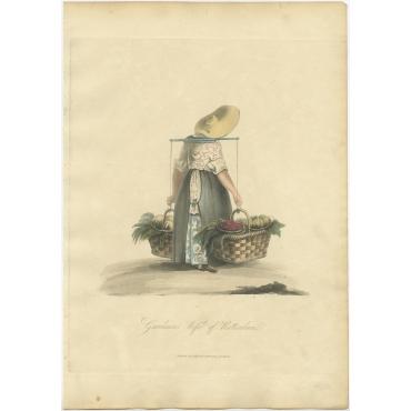 Gardeners Wife of Rotterdam - Ackermann (1817)
