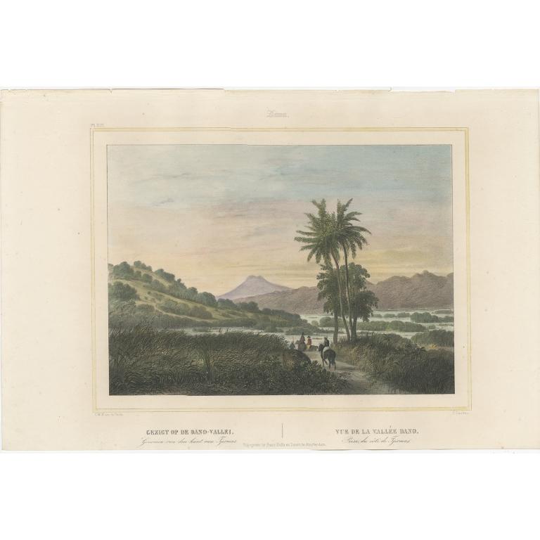 Gezigt op de Dano-Vallei - Lauters (1844)