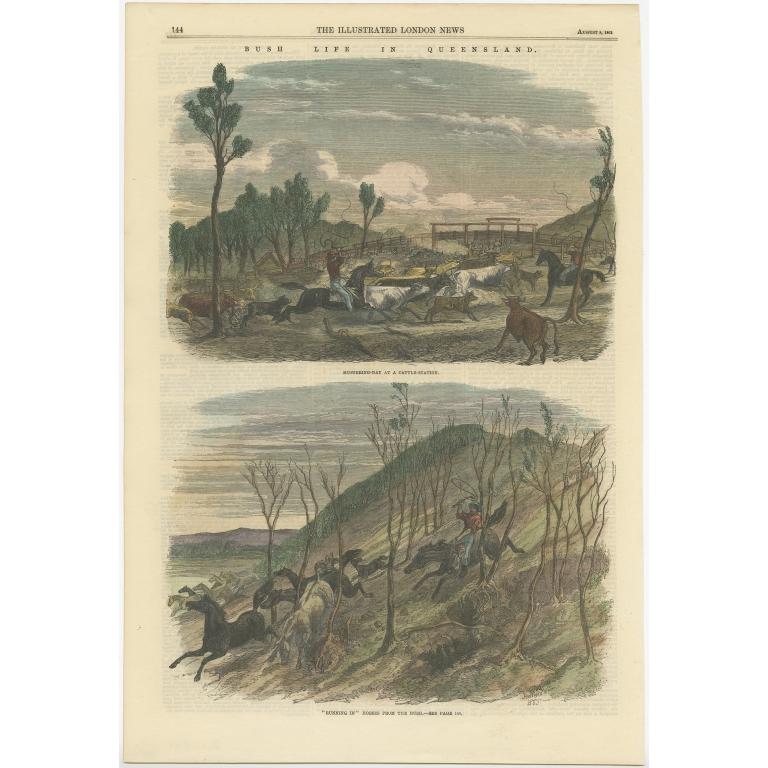 Bush Life in Queensland - London News (1863)