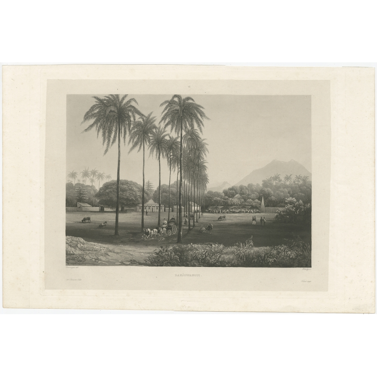 Antique Print of Banyuwangi by Himely (1835)