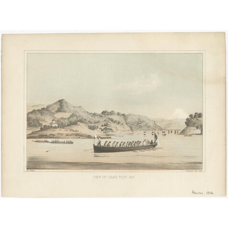 Antique Print of Uraga by Hawks (1856)