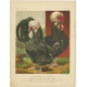 Antique Print of Houdan Chickens by Cassell (c.1880)