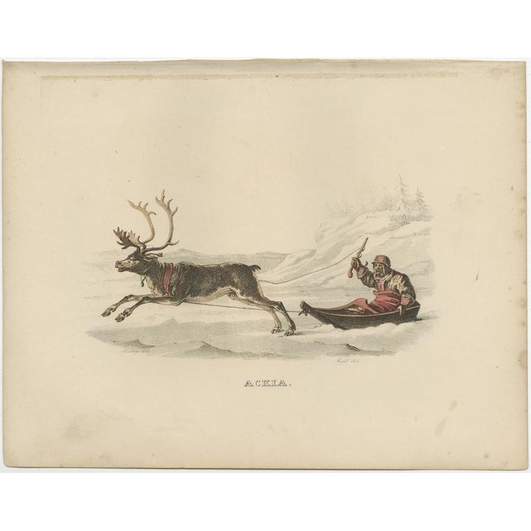 Antique Print of an Ackja Sleigh by Sandberg (c.1864)