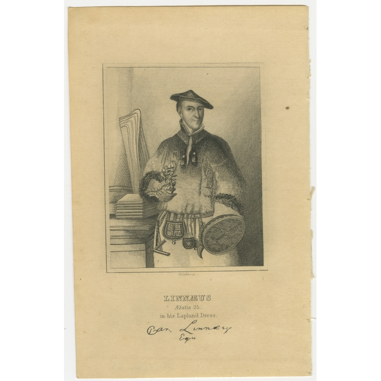 Antique Portrait of Carl Linnaeus by Jardine (1837)